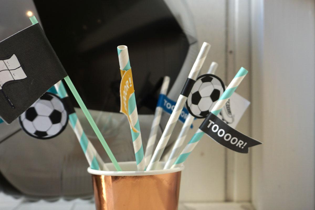 Partypicker zur Fußball-WM